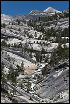 Landscape of smooth granite with flowing Merced. Yosemite National Park, California, USA. (color)