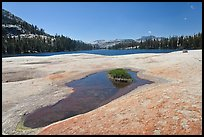 Colorful slab, pothole, and lower Cathedral Lake. Yosemite National Park ( color)
