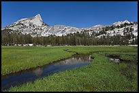 Meadow, stream, Cathedral range. Yosemite National Park, California, USA. (color)