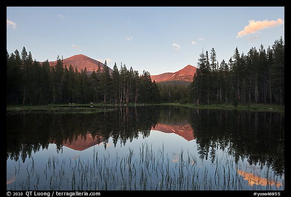 Mt Dana and Mt Gibbs reflected in tarn at sunset. Yosemite National Park (color)