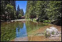 Wawona covered bridge and river. Yosemite National Park, California, USA. (color)