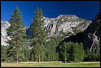 Ahwanhee Meadow, summer. Yosemite National Park, California, USA. (color)