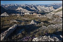 Alpine environment with distant mountains, Mount Conness. Yosemite National Park, California, USA. (color)