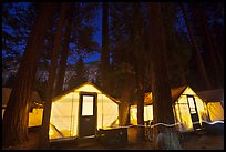 Curry Village tents by night. Yosemite National Park, California, USA. (color)