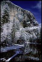 East Face of El Capitan and Merced River in winter. Yosemite National Park, California, USA.