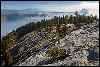 Smoke-filled valley and Half-Dome from Sentinel Dome. Yosemite National Park ( color)
