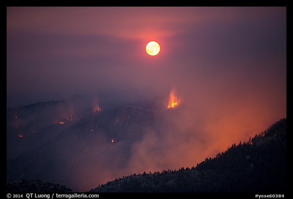 Forest fire and moon. Yosemite National Park (color)