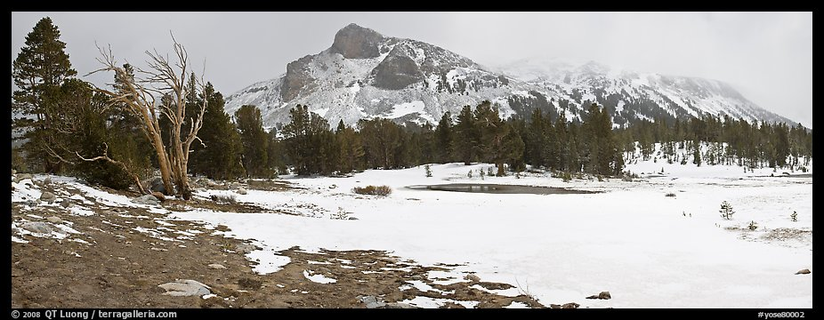 Tioga Pass, peaks and snow-covered meadow. Yosemite National Park (color)