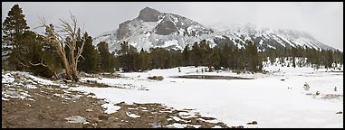 Tioga Pass, peaks and snow-covered meadow. Yosemite National Park, California, USA. (color)