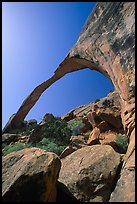 Landscape Arch, morning. Arches National Park, Utah, USA. (color)