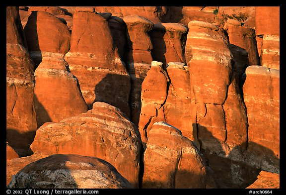 Sandstone fins at Fiery Furnace, sunset. Arches National Park (color)