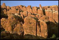Sandstone fins at Fiery Furnace, sunset. Arches National Park, Utah, USA.