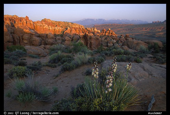 Fiery Furnace, and La Sal Mountains, dusk. Arches National Park (color)