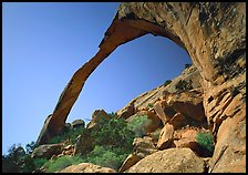 Landscape Arch, morning. Arches National Park ( color)