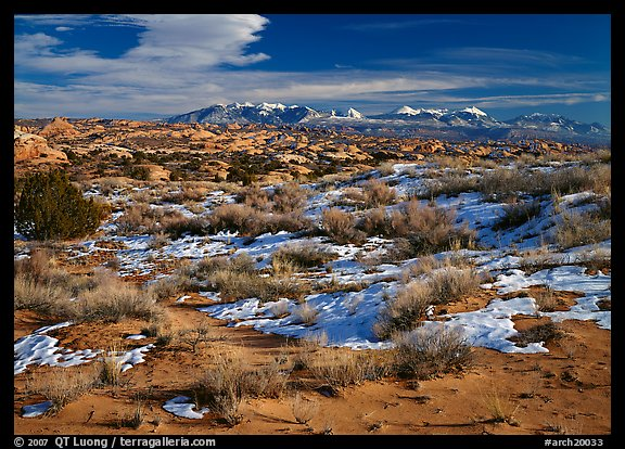 Petrified dunes, ancient dunes turned to slickrock, and La Sal mountains, winter afternoon. Arches National Park (color)