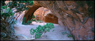 Navajo Arch. Arches National Park (Panoramic color)