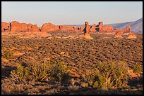 Desert shrub, flatlands, and Windows group in distance. Arches National Park, Utah, USA. (color)
