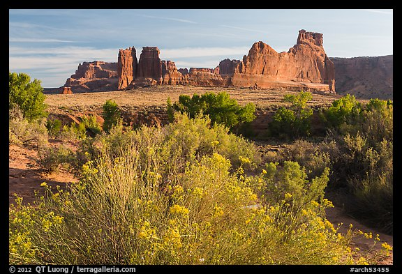 Shrub, cottonwoods and sandstone fins. Arches National Park (color)
