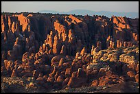 Fiery Furnace fins on hillside. Arches National Park, Utah, USA. (color)