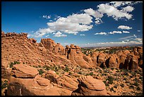 Entrada sandstone fins. Arches National Park, Utah, USA. (color)