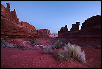 Park Avenue at dawn. Arches National Park ( color)
