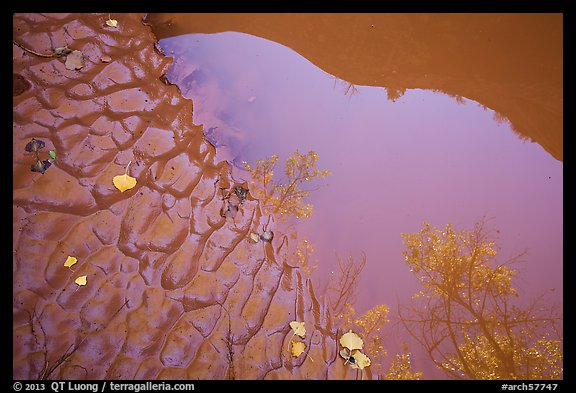 Mud and canyon reflected in pool Courthouse Wash. Arches National Park (color)