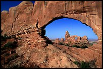 Turret Arch seen through South Window, early morning. Arches National Park, Utah, USA.
