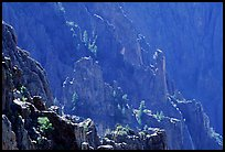 Blue hues from Island peaks view, North rim. Black Canyon of the Gunnison National Park, Colorado, USA.