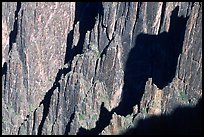Detail of canyon wall from Kneeling camel view, North rim. Black Canyon of the Gunnison National Park, Colorado, USA. (color)