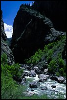 Gunisson river near the Narrows. Black Canyon of the Gunnison National Park, Colorado, USA.