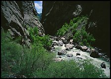 Gunisson River in narrow gorge in spring. Black Canyon of the Gunnison National Park, Colorado, USA.