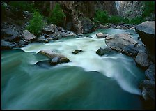 Gunisson river rapids near Narrows. Black Canyon of the Gunnison National Park, Colorado, USA.