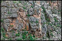 Fractured rock wall. Black Canyon of the Gunnison National Park, Colorado, USA. (color)