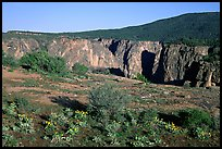 Plateau and gorge. Black Canyon of the Gunnison National Park, Colorado, USA. (color)