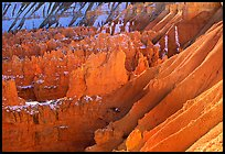 Eroded slopes and Hoodoos from Sunrise Point. Bryce Canyon National Park, Utah, USA.