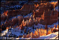 Shadows and lights, Bryce Amphitheater from Sunrise Point, morning. Bryce Canyon National Park ( color)