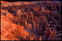 Silent City dense cluster of hoodoos from Bryce Point, sunrise. Bryce Canyon National Park, Utah, USA. (color)