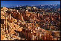 Queen's Garden from Sunset Point, morning. Bryce Canyon National Park, Utah, USA.