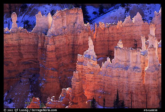 Backlit Hoodoos, mid-morning. Bryce Canyon National Park (color)