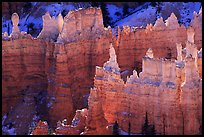 Backlit Hoodoos, mid-morning. Bryce Canyon National Park, Utah, USA. (color)
