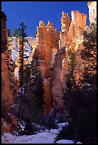 Hoodoos seen from  Queen's garden Trail. Bryce Canyon National Park, Utah, USA. (color)