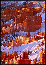 Hoodoos and snow from Sunrise Point, winter sunrise. Bryce Canyon National Park, Utah, USA.