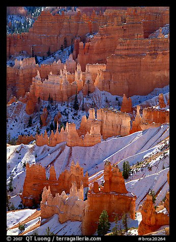 Sandstone rock pillars seen from Sunrise Point in winter, mid-morning. Bryce Canyon National Park (color)