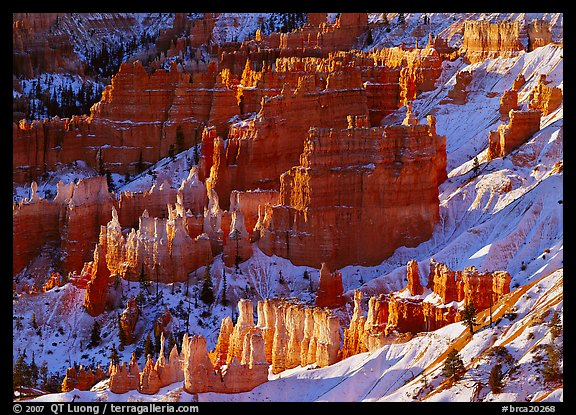 Rock spires and snow seen from Sunrise Point in winter, early morning. Bryce Canyon National Park (color)