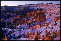 Bryce amphitheater from Sunrise Point, dawn. Bryce Canyon National Park, Utah, USA. (color)