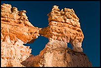 Hoodoos and windows. Bryce Canyon National Park, Utah, USA. (color)