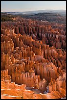 Tightly packed hoodoos from Bryce Point, sunrise. Bryce Canyon National Park, Utah, USA. (color)