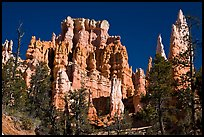 Hoodoos capped with magnesium-rich limestone. Bryce Canyon National Park, Utah, USA. (color)
