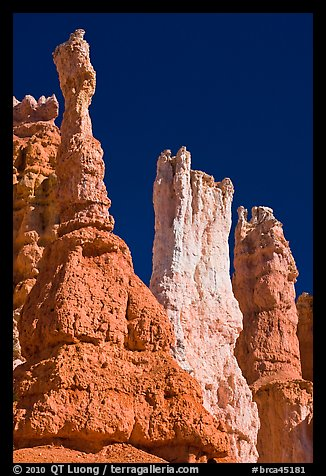 Hoodoos subject to chemical weathering by carbonic acid. Bryce Canyon National Park (color)