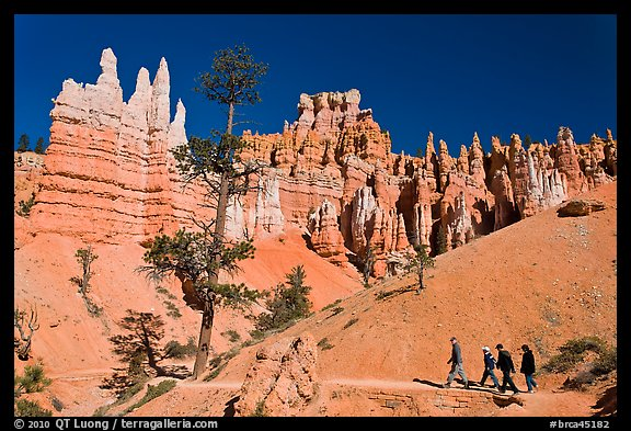 Hiking trail below hoodoos. Bryce Canyon National Park (color)